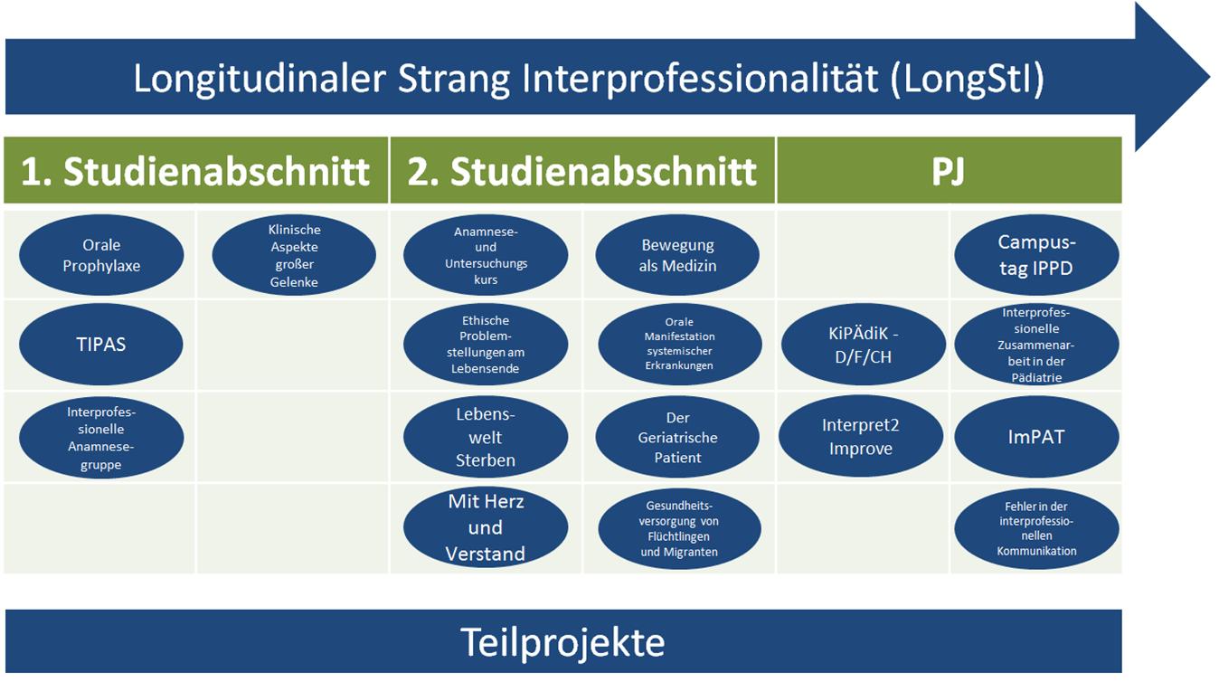 Longitudinale Stränge Uebersicht